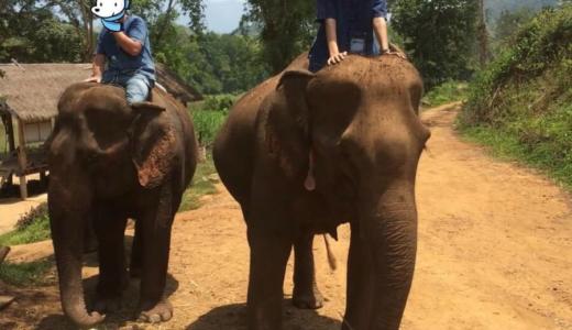 【ラオス観光・後編】世界遺産ルアンパバーンで象使いの資格をとる
